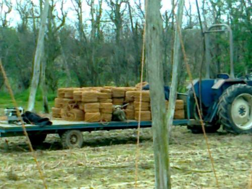 trailer-of-twine-1024x768